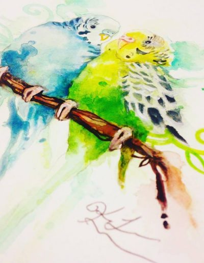 Watercolor Parakeet